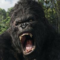 ALELUIA! Universal Pictures volta a lançar Blu-rays no Brasil!