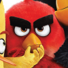 As edições de Angry Birds: O Filme em pré-venda no Brasil