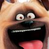 Animação Pets: A Vida Secreta dos Bichos no Brasil